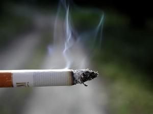 鼻子裡的細菌因為怕煙,反而變得更頑強