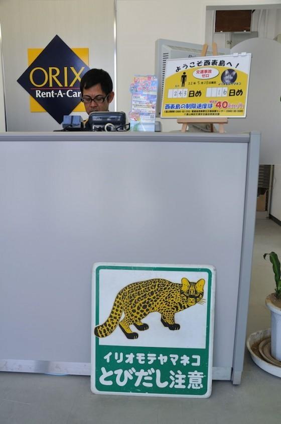 1. 西表島租車公司的櫃檯,以最醒目的方式提醒駕駛減速慢行以免傷害西表山貓。