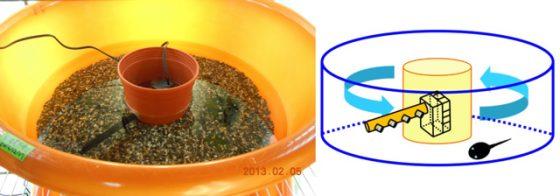 ▲ 自製提供循環水流的飼養環境。右圖為示意。