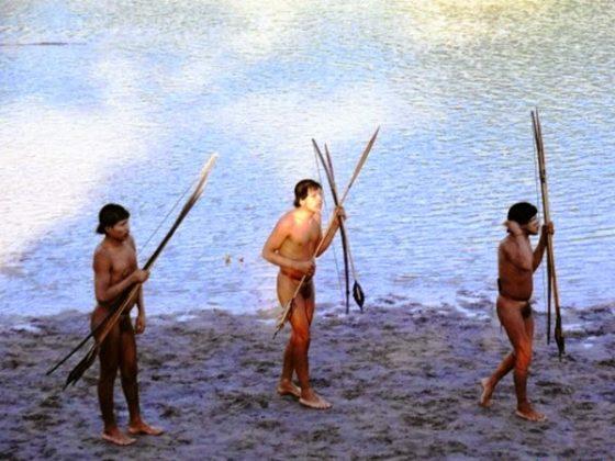 契瓦瓦族(Chitonahua)。圖片來源:Science Now