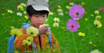 行為理論能應用在孩子的教養嗎?
