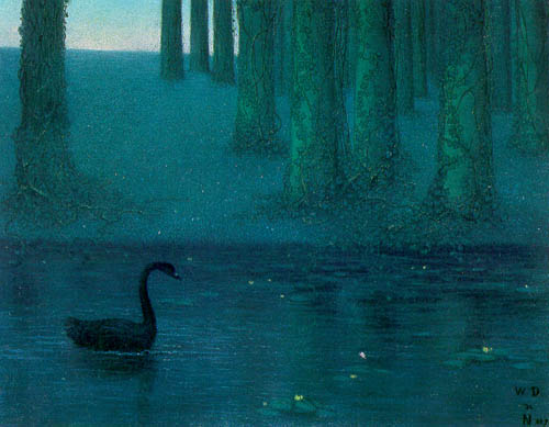 《The Black Swan》,1896, by William Degouve de Nuncques