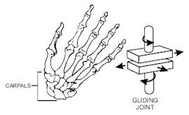 滑動關節:適用於比較小幅度的平面滑動,例如手掌中的小碎骨結合的平面