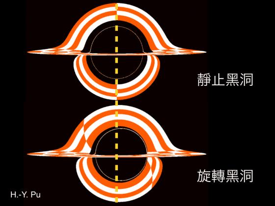 """圖二;相較於一個靜止黑洞而言,一個旋轉黑洞進一步讓周圍的時空也跟著""""旋轉""""。這樣的效應讓由黑洞左側和右側逃逸的光線路徑變得不對稱,而造成不對稱的影像。"""