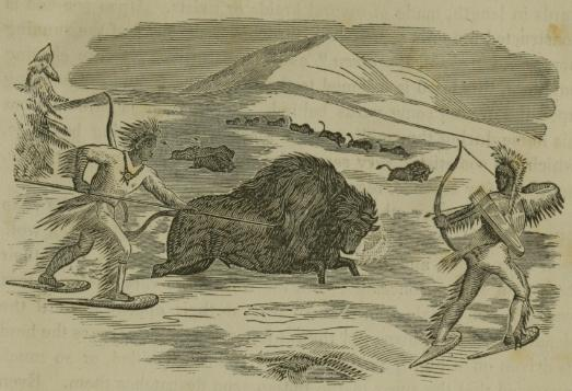 Indians_Hunting_Buffalo_in_the_Winter