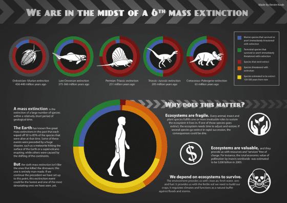 前五次大滅絕跟第六次大滅絕的比較。內圈是海洋,外圈是陸地,紅色代表滅絕數。 圖片來源|The Science News