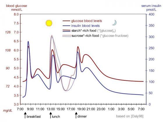 """Suckale08 fig3 glucose insulin day"" 由 Jakob Suckale, Michele Solimena - Solimena Lab and Review Suckale Solimena 2008 Frontiers in Bioscience PMID 18508724, preprint PDF from Nature Precedings, original data: Daly et al. 1998 PMID 9625092。 使用來自 维基共享资源 的 創用CC 姓名標示-相同方式分享 3.0 條款授權。"