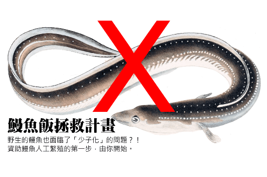 eel-issue
