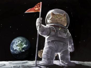 Ami_Thompson_original_cat_space_planets_humor_800x600