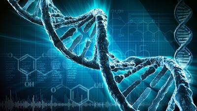 基因只不過是模型? via kastglows.ca