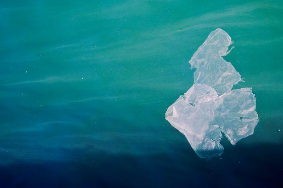 海洋垃圾,PanSci