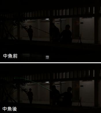 有魚上鉤時,釣竿會顯現出發亮的光纖。(圖片來源:Night Flash 夜漁玩家團隊)