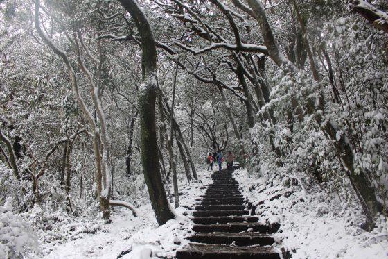 這場寒流的陽明山雪景。來源:Flickr/Chi-Hung Lin (CC BY-SA 2.0)