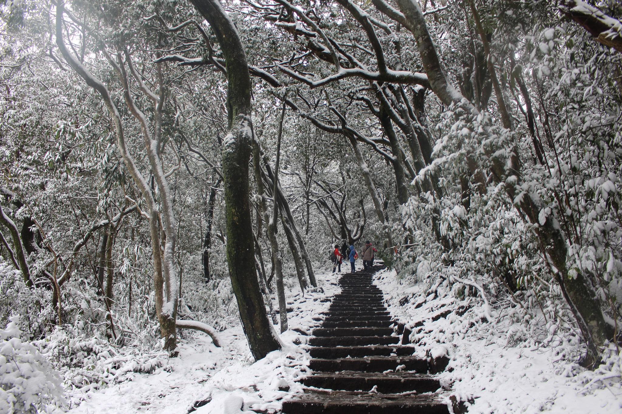 台灣以前下過雪嗎?平地大雪紛飛的太平盛世