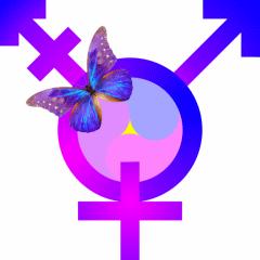 代表跨性別的諸多標誌之一。來源:維基百科
