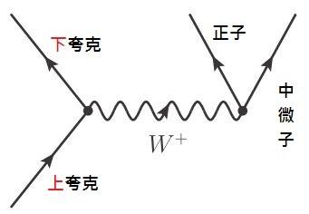 上夸克和W粒子作用後轉變為下夸克;W粒子又作用產生正子與電子中微子。也因此,前圖裡氫融合成氘才成為可能。