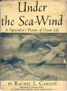 第一本書《海風之下》(圖片來源)。