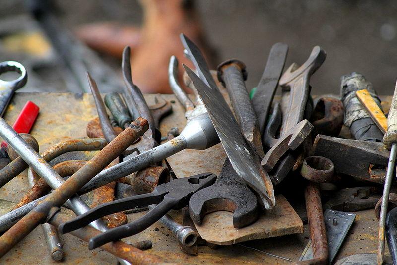 世界末日之後,你必須成為會做工具的工具人!——《最後一個知識人》