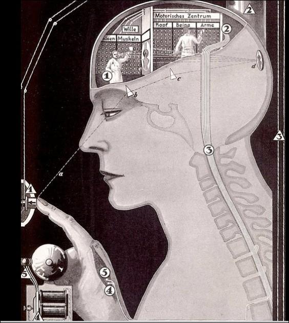 我們擁有自由意志嗎?—《大腦簡史》 - PanSci 泛科學
