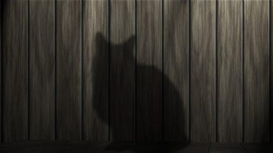 cat-233367_640