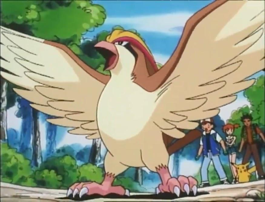 科學寶可夢 #018 比雕:鳥能飛2馬赫你敢信?