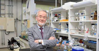 2016諾貝爾生醫獎:細胞自噬和大隅良典的酵母菌