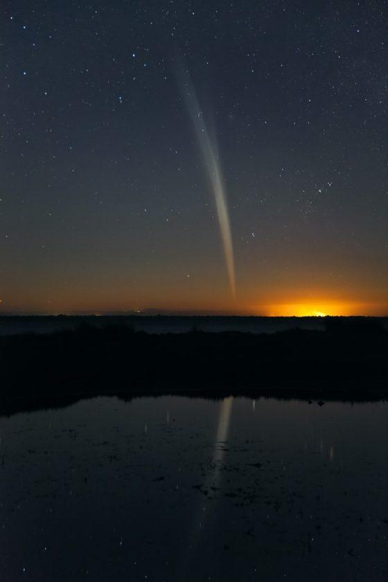 2011年來訪的Lovejoy彗星是顆非常明亮的掠日彗星。圖 / http://www.skyandtelescope.com/observing/home/136099108.html