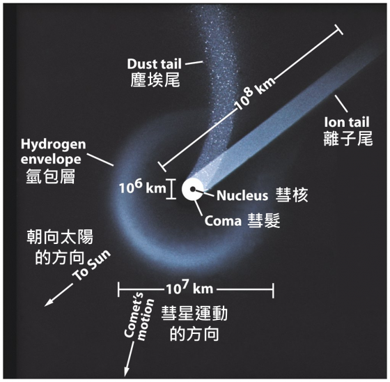 彗星的結構(經修改加上中文)。圖 / http://spot.pcc.edu/~aodman/GS%20107%20web/outerobject/comet%20and%202%20tails.jpg