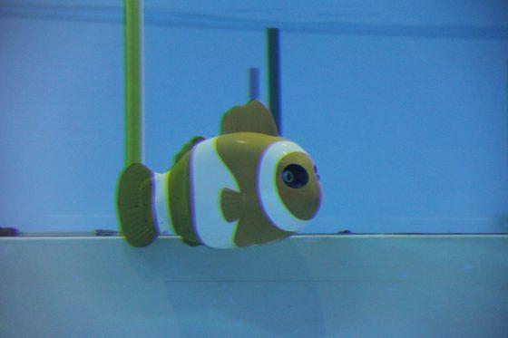 Nemo,主要的功能是在海科館中與觀眾進行互動,是水中的服務型機器人。圖/親子天下提供