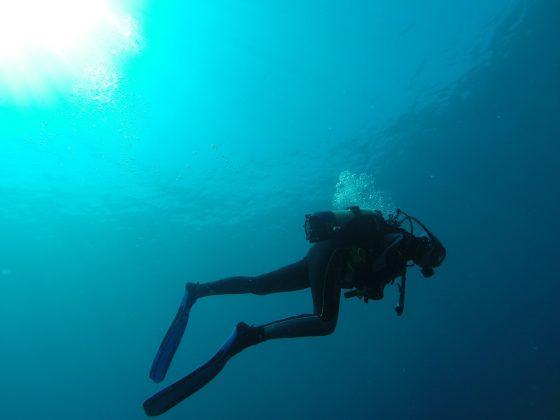 diver-752667_1280