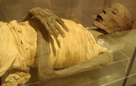 埃及木乃伊中藏有許多古埃及人對於人體解剖學的先進認知。圖/By Keith Schengili-Roberts - Own Work (photo), CC BY-SA 2.5, https://commons.wikimedia.org/w/index.php?curid=1650586
