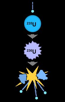 中子撞擊鈾的核分裂示意圖(圖片來源)