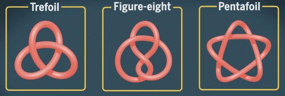 目前已經成功合成的三種分子結,由左而右為:三葉結、八字結和五葉結。圖/取自 Science 期刊研究介紹影片