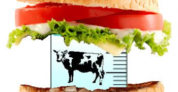 要求有害物質「零檢出」,為什麼這麼難?—食安基本功(下)