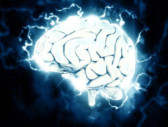 看看你的腦袋裡,到底都裝了些什麼?——《科學月刊》