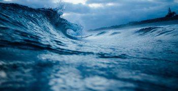 用「生物地球化學」探索物質循環的藍色海洋傳說!