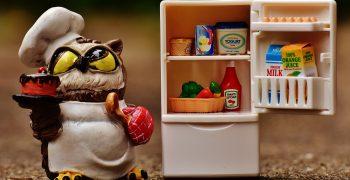 食物放涼了才能冰? 剩菜冰了會流失營養?關於生鮮食品保存的六大迷思──「PanSci TALK:生鮮食品該如何保存」