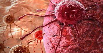 蛋白上的醣分子:發現新的醣化調控機制,有助醣蛋白藥物突破