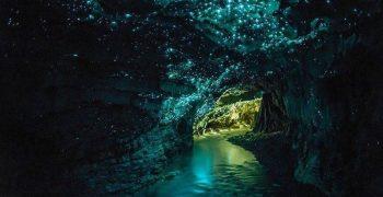 紐西蘭的懷托摩洞穴,住著會發光的魔幻藍精靈!