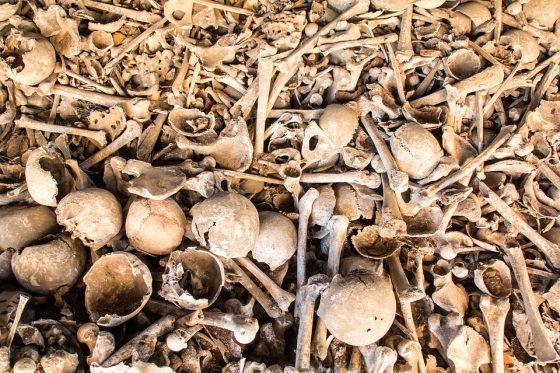 法醫人類學家:從屍骨中找回逝者曾經的存在──《比小說還離奇的 12 堂犯罪解剖課》