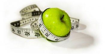 吃少少卻瘦不了?從棕色脂肪的「代謝方程式」解析身體代謝與耗能機制