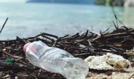 善用會吃塑膠的細菌,分解寶特瓶不用再等 450 年